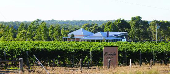 evans-tate-winery